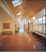 stpeterscollege_lwexford